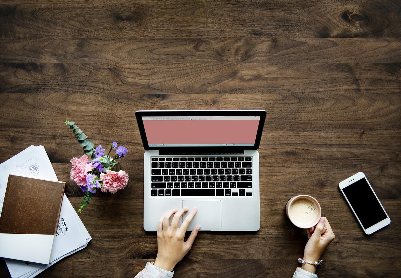 Karriär som bloggare